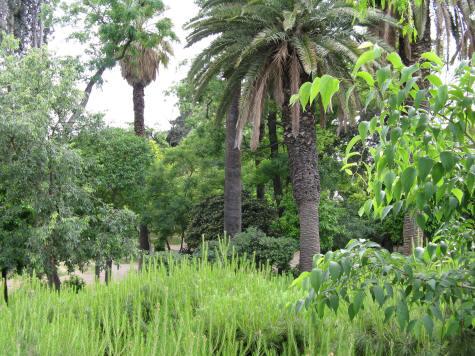 National Garden in Athens Greece - Popular Tourist Attraction